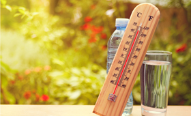 Beat the Heat: Westchester Medical Center Health Network Offers Weather Safety Tips for Hot Temperatures Forecasted this Week