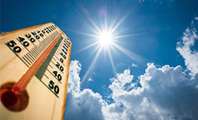 Beat the Heat: Westchester Medical Center Health Network Offers Hot Weather Safety Tips